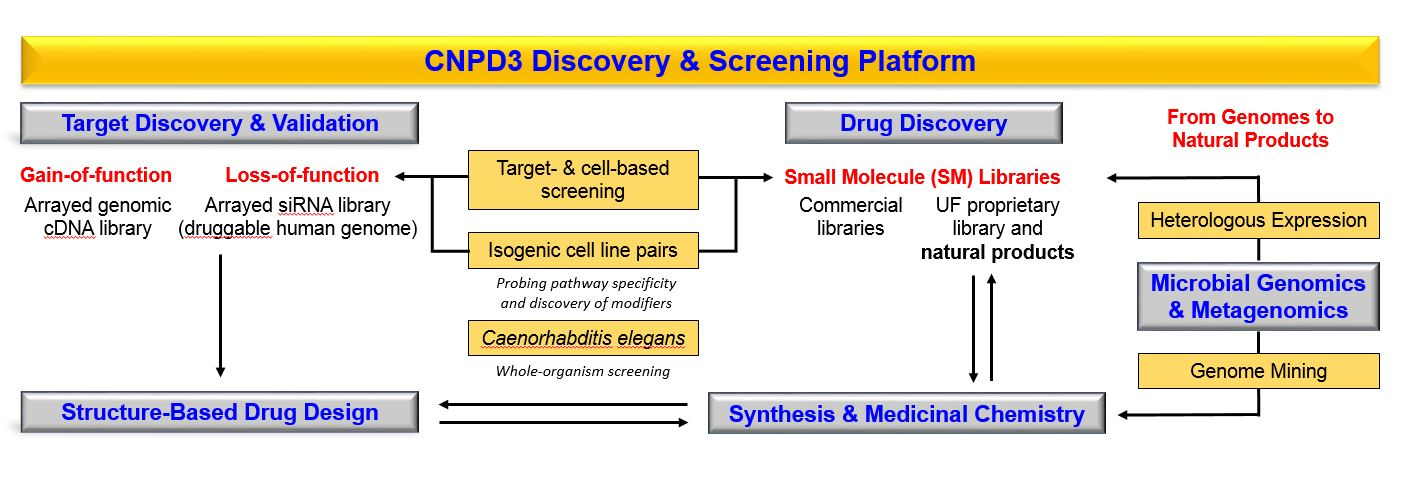 CNPD3 Drug Discovery and Screening Platform