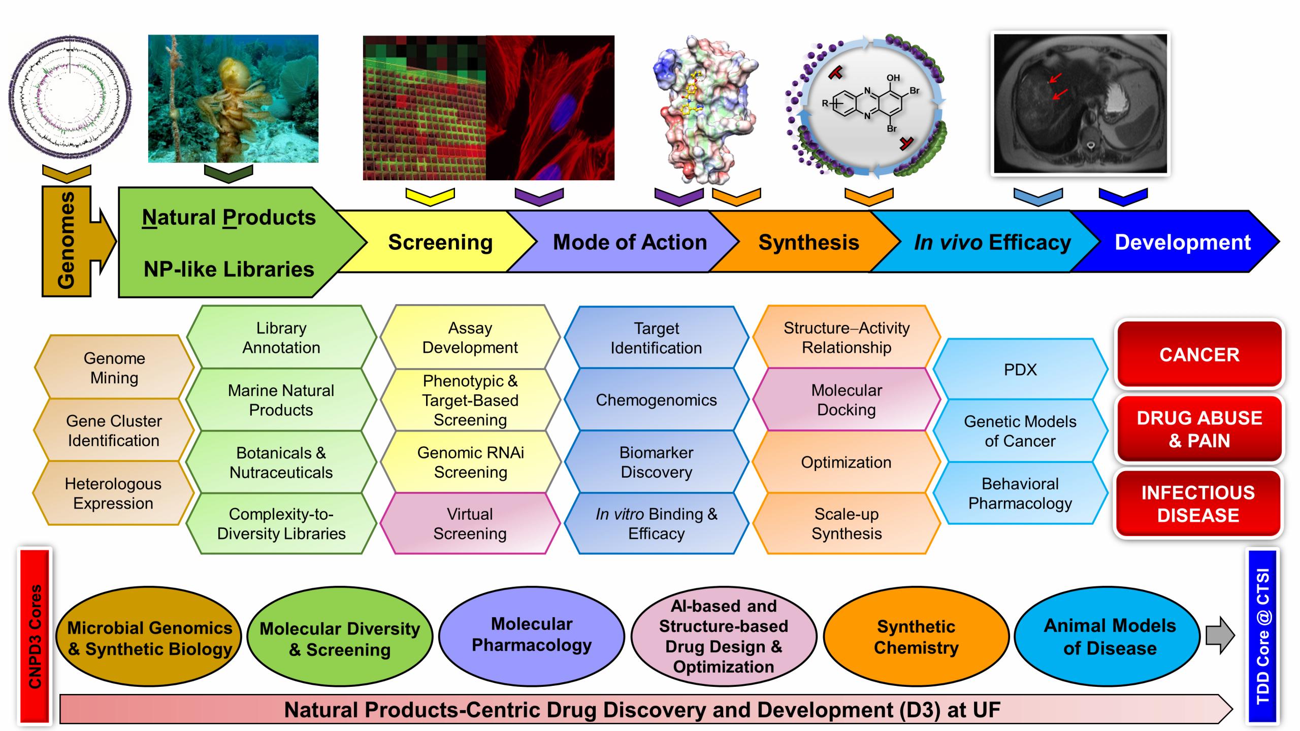 CNPD3 Activities Overview